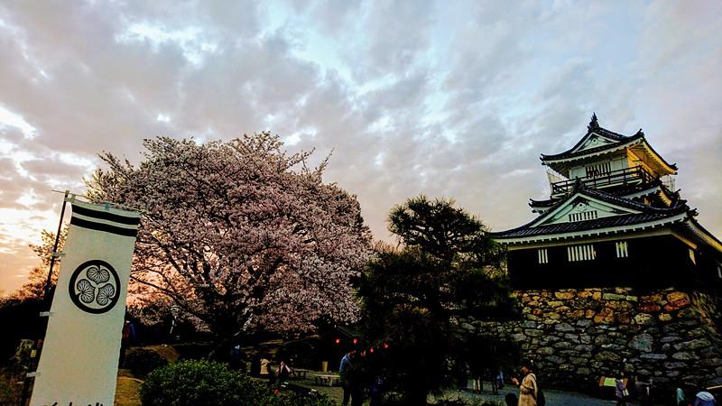 葵の御紋と桜と城[浜松城]