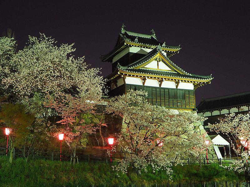追手向櫓◆夜桜ver