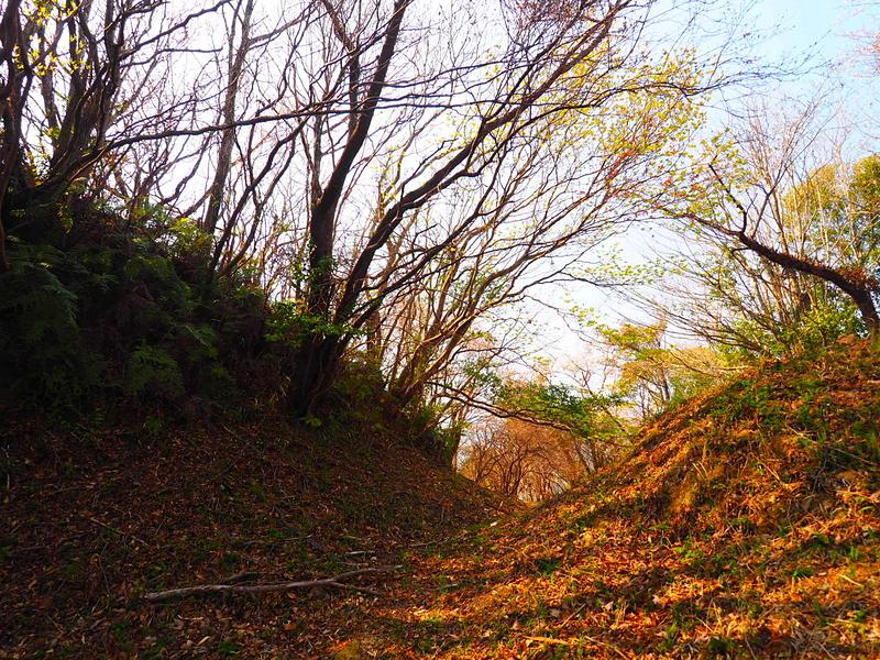 堀切◆詰ノ段とニノ段