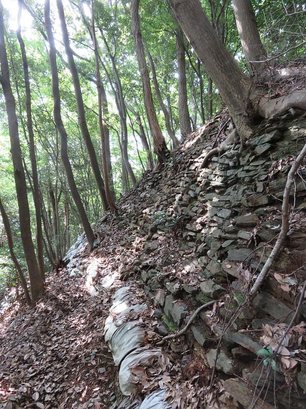 郭3東側の石垣
