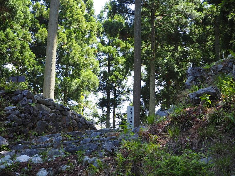 主郭虎口の石垣を見上げる。
