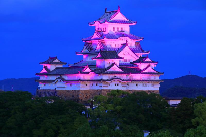 初の紫ライトアップ[姫路城]