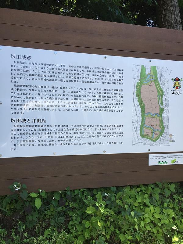 坂田城の写真:坂田城 | 攻城団