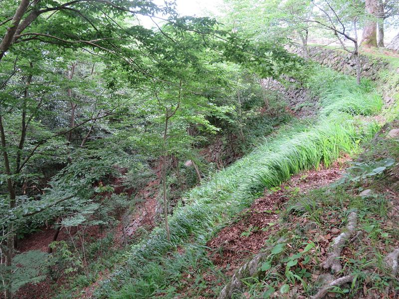 北ノ丸の五段石垣
