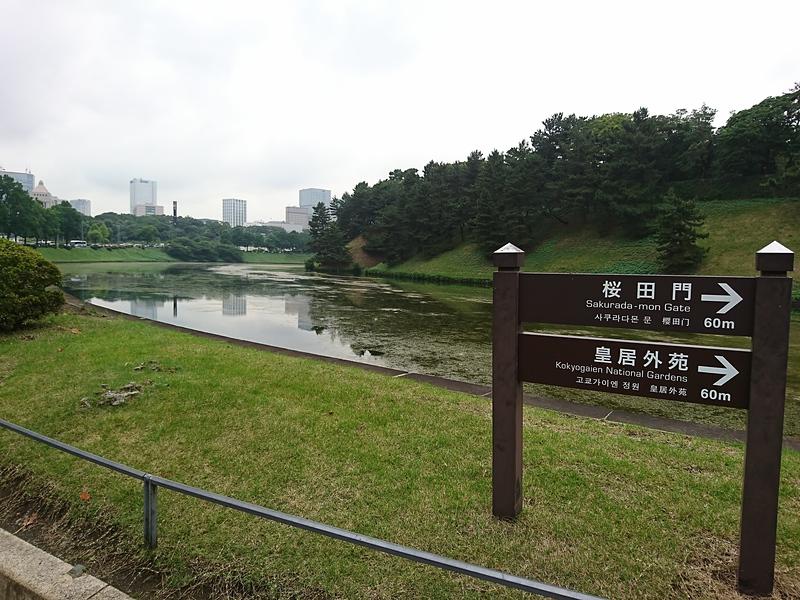 桜田濠と土塁