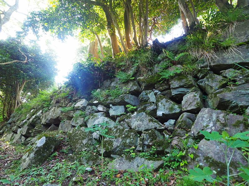 ホウヅキ段石垣