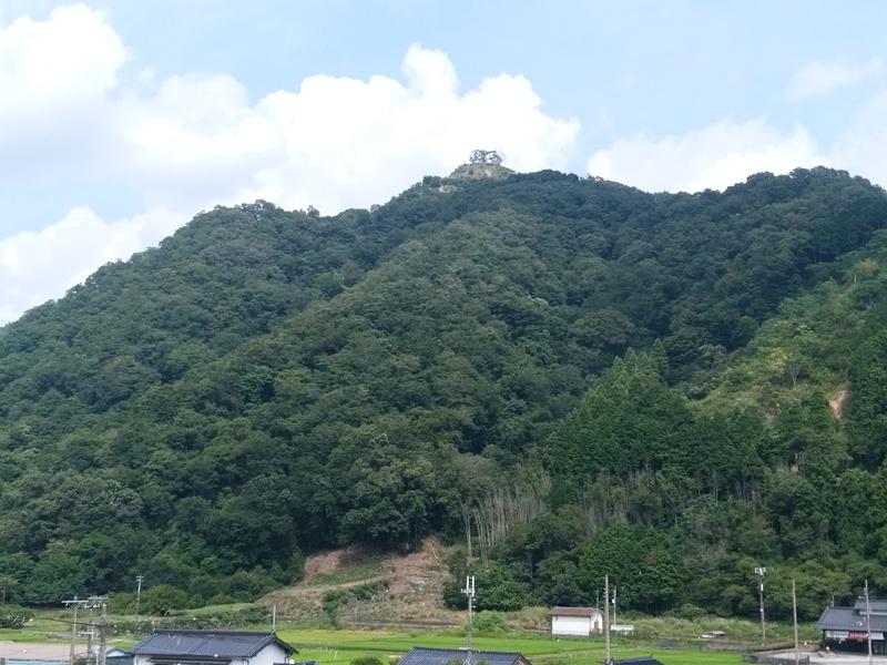平福駅から見た時はよく分からなかったのですが、少し離れた道の駅の展望台から見ると結構分かりました。