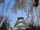 大阪城、春の陣…
