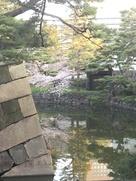 帯曲輪門 (不浄門)…