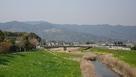 吉野ヶ里から見るサクラの山…