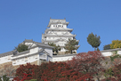 紅葉と姫路城(秋)…