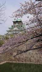 大天守と桜と石垣と堀…
