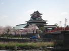 桜と清州城(西から)…