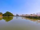 南東の堀と桜並木…