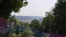 勢溜の壇からの吉田町の眺め…