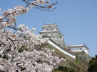 桜の向こうに その弐…