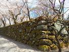 石垣(中仕切門辺り)…