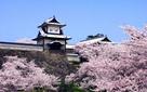 桜の時期の石川門…