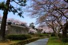 石川門(春)
