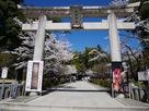 武田神社入り口…