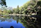 五島氏庭園 心字ヶ池…