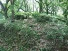 畝状竪堀群の一部…