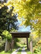 城址入口の門と春紅葉…