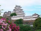 晩春の播州 姫路城…