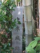 竹藪に埋もれた石碑…