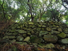 井戸周辺の石垣…