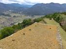 三十間台から人質櫓、津和野城下を臨む…