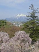天守から見る岩木山…