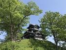 新緑の三重櫓