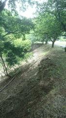 二ノ丸の空堀斜面…