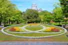 「姫路市章」型花壇と青葉…