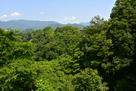 上野原城跡遠景…