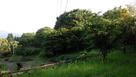 岩尾城 2の丸 遠景…