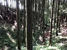 空堀@本丸(左)北下…