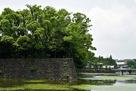 大手濠と平川門…