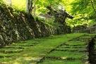 新緑の石垣参道…