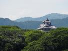 緑に浮かぶ福知山城…