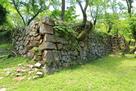 本丸南部の内側石垣…