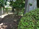 浄泉寺の歴史 解説板裏の土塁…