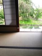 下屋敷茶室より泉水の眺め…