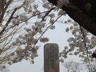 海津城石碑
