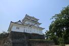 日本百名城 小田原城に登城…