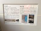 兵庫津遺跡の案内板…