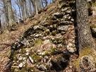 斜面に残る石垣…