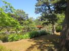 芦城公園(三の丸跡)…