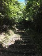 神社までの道